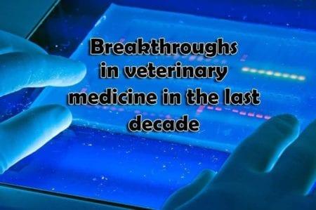 Breakthroughs in Veterinary Medicine in the Last Decade