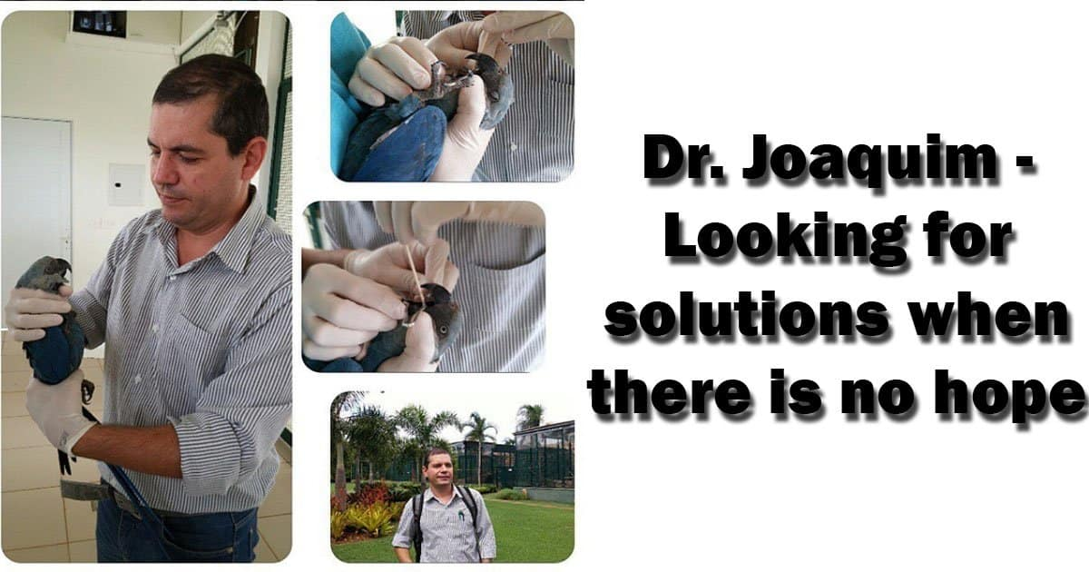 Dr. Joaquim – Looking for solutions when there is no hope
