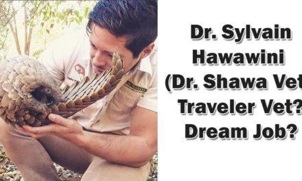 Dr. Sylvain Hawawini (Dr. Shawa Vet) – Traveler Vet? Dream Job?