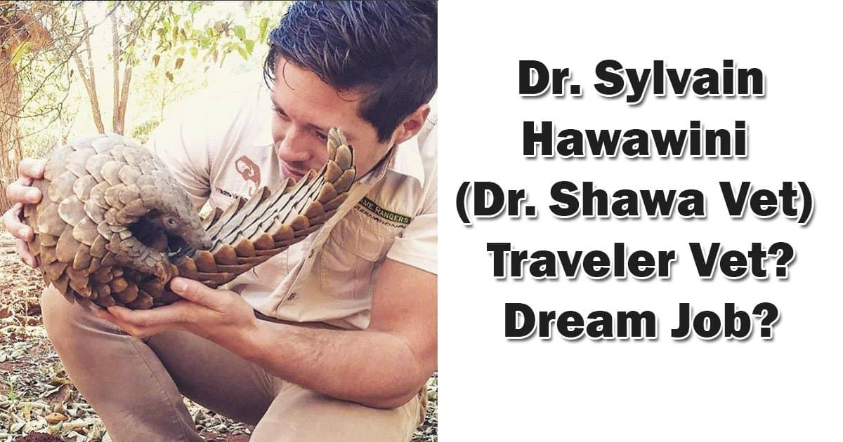 Dr. Sylvain Hawawini (Dr. Shawa Vet) – Traveler Vet? Dream Job?