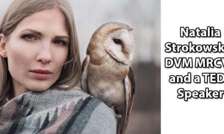 Natalia Strokowska- DVM MRCVS and a TEDx Speaker