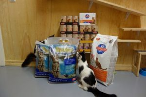 Pet food Animals life net donations