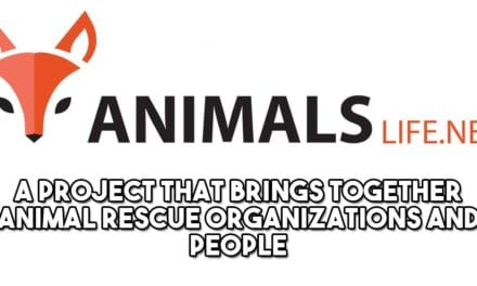 Animals Life NET- Our new partner!