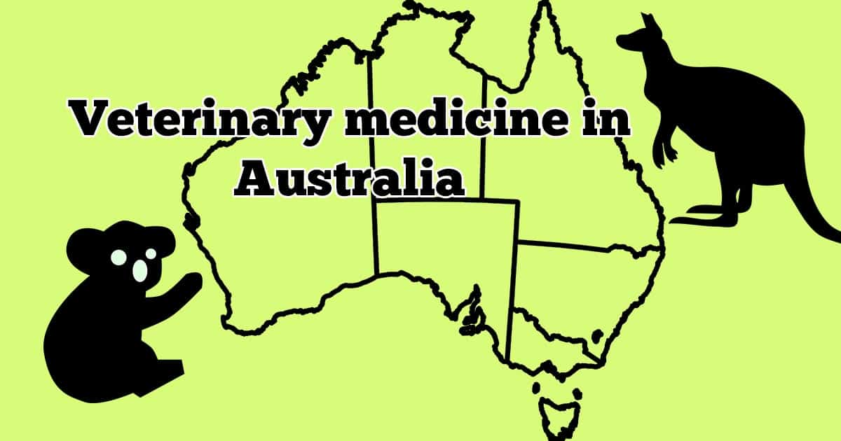 Veterinary medicine in Australia