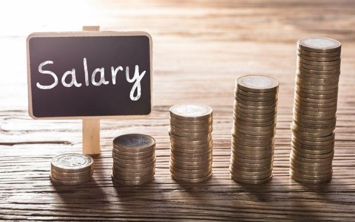 veterinary assistant salary I Love Veterinary
