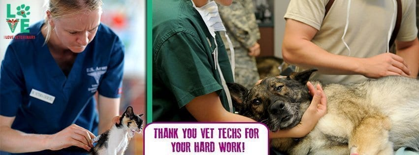 Vet Tech Appreciation Week I Love Veterinary