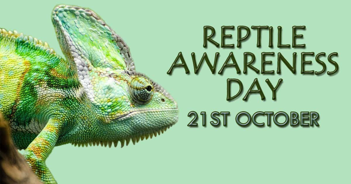 Reptile Awareness Day- 21st October