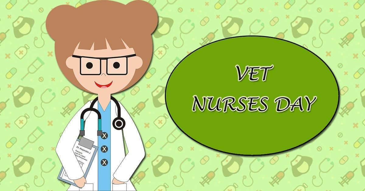 Vet Nurses Day- October 13