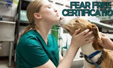 Fear Free Certification
