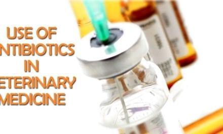 Use of antibiotics in Veterinary Medicine