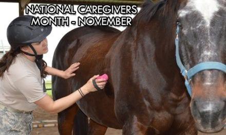 National Caregivers Month – November