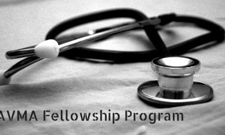 AVMA Fellowship Program