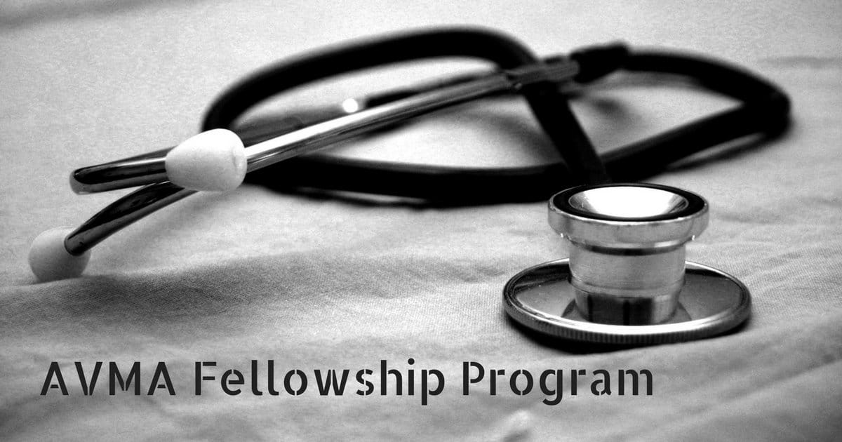 AVMA Fellowship Program