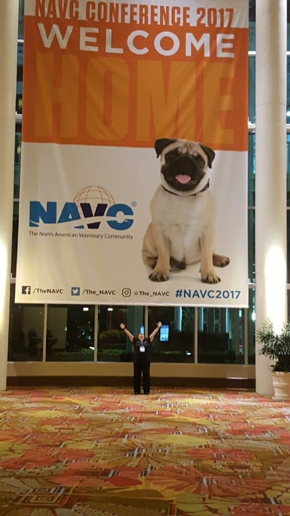 NAVC 2017 conference