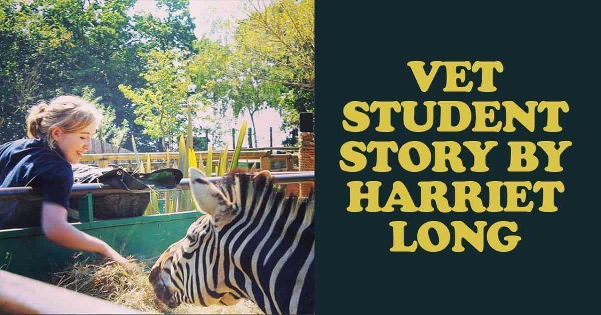 Vet Student Story by Harriet Long