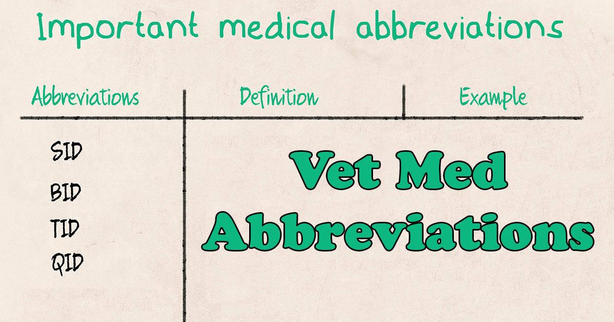 Vet Med Abbreviations