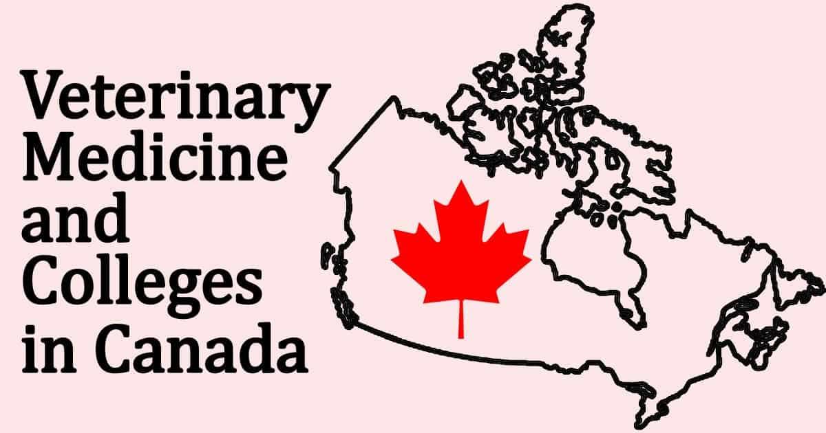 vet schools in Canada