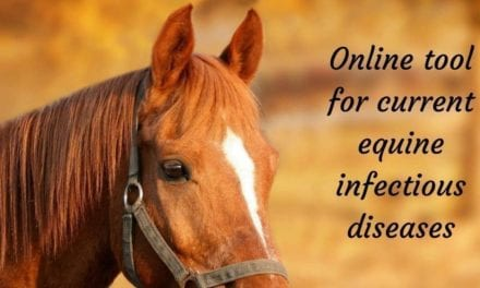 Online tool for current equine infectious diseases