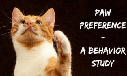 Paw preference – a behavior study