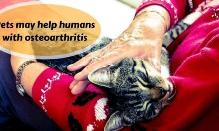 Pets may help humans with osteoarthritis