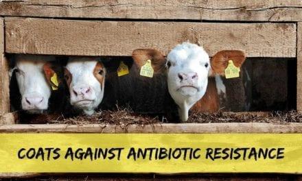 Coats against antibiotic resistance