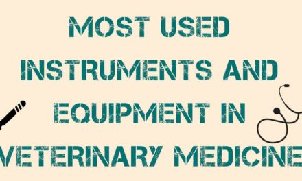 Most used instruments and equipment in Veterinary Medicine