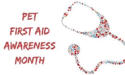 Pet First Aid Awareness Month – April 2018