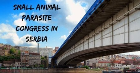 Small Animal Parasite Congress in Serbia