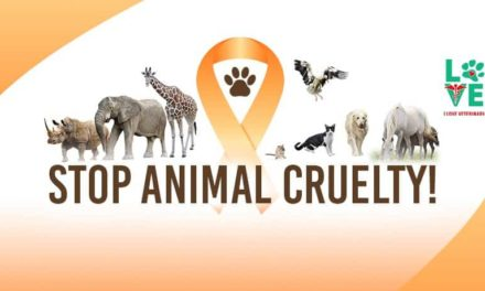 Animal Cruelty Prevention Month – April 2020