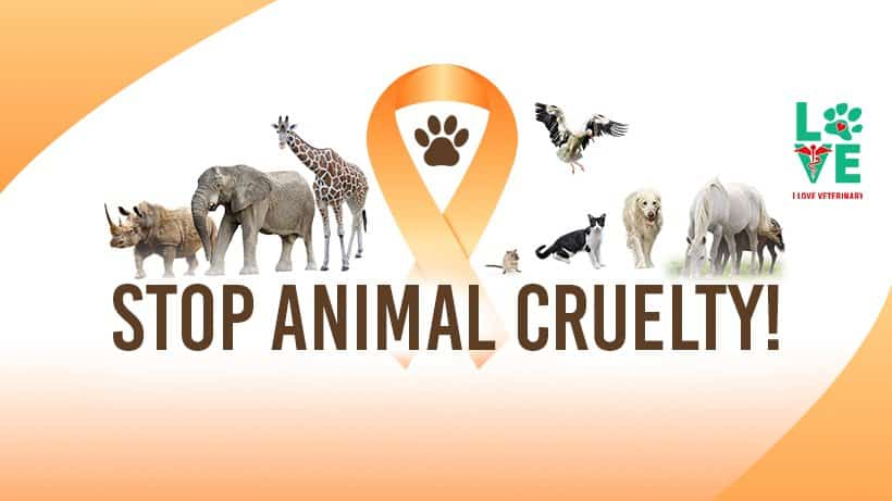 Animal Cruelty Prevention Month – April 2018