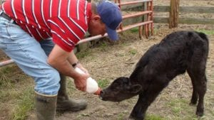 farming 935267 1920 I Love Veterinary - Blog for Veterinarians, Vet Techs, Students
