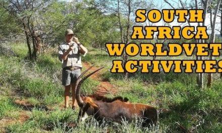 SA WorldVets Activities