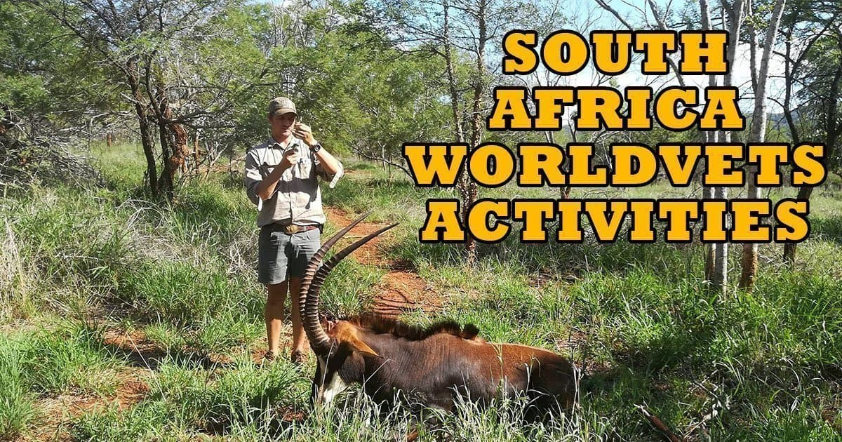 SA WorldVets Activities