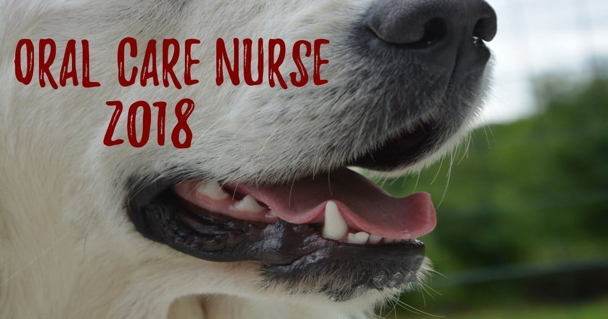Oral Care Nurse 2018