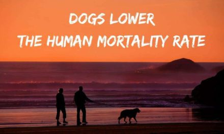 Dogs lower the human mortality rate