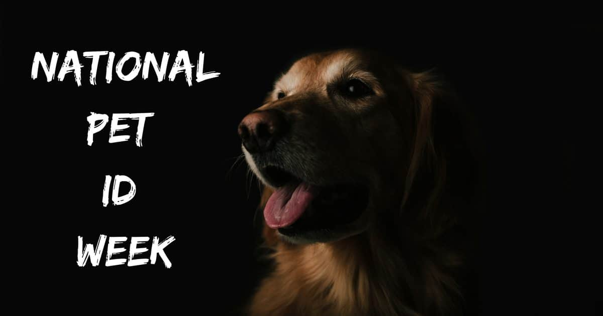 National Pet ID Week