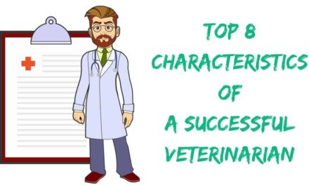 Top 8 Characteristics of a Successful Veterinarian