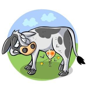 agribusiness 1487028 1920 I Love Veterinary - Blog for Veterinarians, Vet Techs, Students