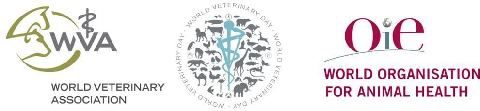 logosEN I Love Veterinary - Blog for Veterinarians, Vet Techs, Students