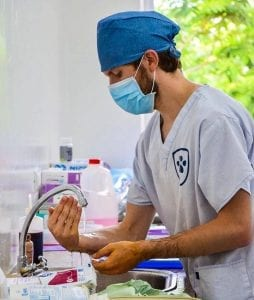 33600763 10214385418202817 5805882734274412544 n I Love Veterinary - Blog for Veterinarians, Vet Techs, Students