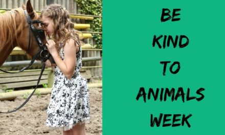 Be Kind to Animals Week – May 6-12