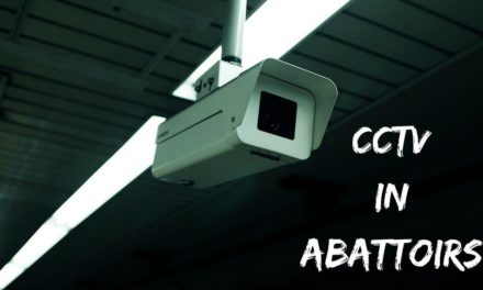 CCTV in abattoirs