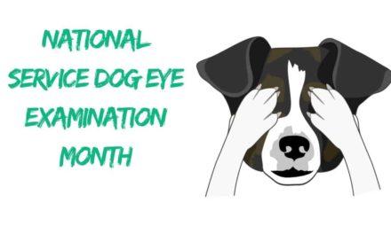 National Service Dog Eye Examination Month – May 2018