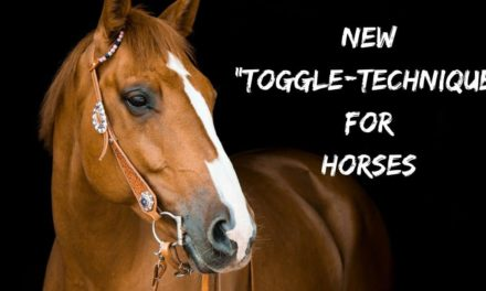 """New """"toggle-technique"""" for horses"""