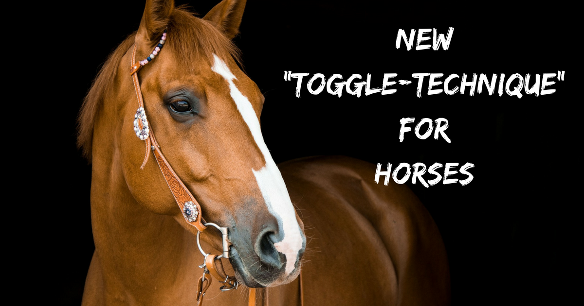 "New ""toggle-technique"" for horses"
