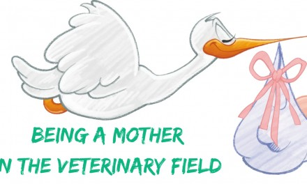 Being a Mother in the Veterinary Field