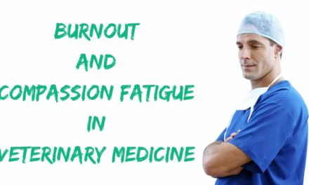 Burnout and compassion fatigue in veterinary medicine