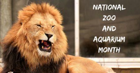 National Zoo and Aquarium Month – June