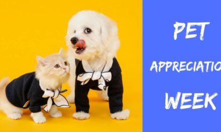 Pet Appreciation Week – June 3-9 2018