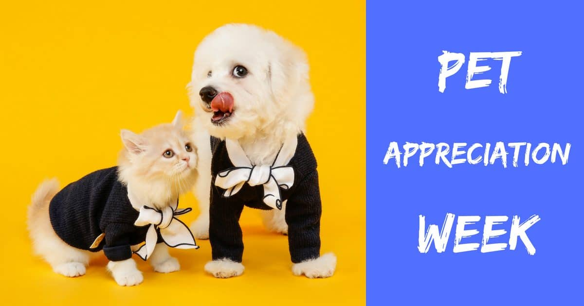 Pet Appreciation Week – June 3-9 2018